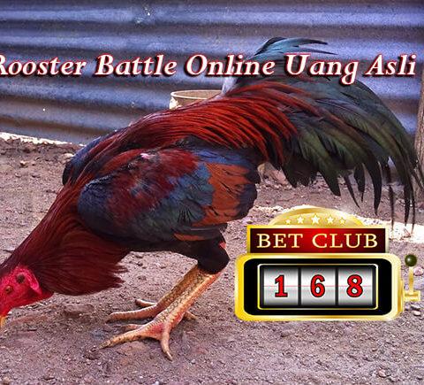 Popularitas Rooster Battle Online Semakin Meledak | Sabung Ayam