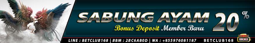 bonus deposit sabung ayam 20%