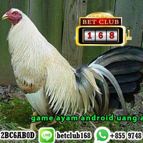 game ayam android uang asli